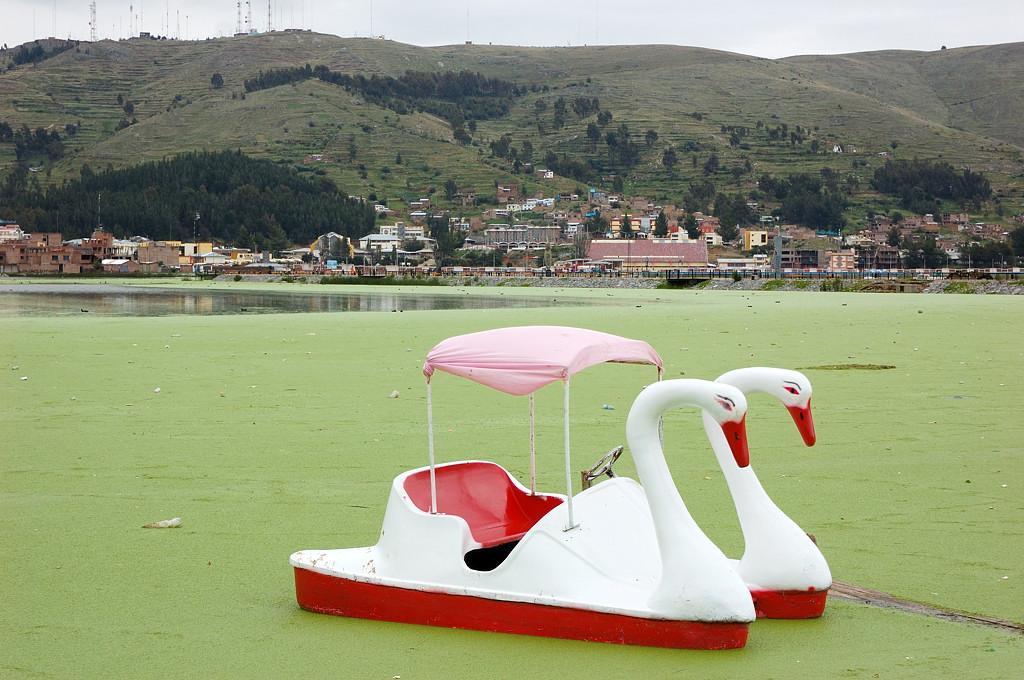 Озеро Титикака у берега заросло ряской