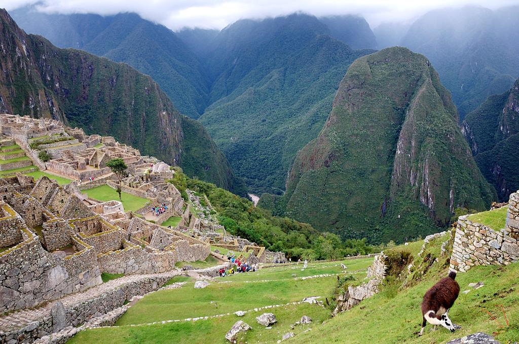 На террасах Мачу-Пикчу