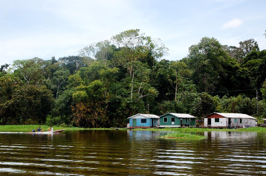 Приближаемся к джунглям