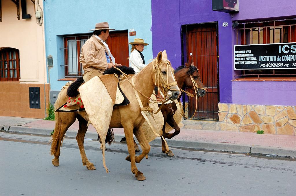 Южноамериканские ковбои - гаучо