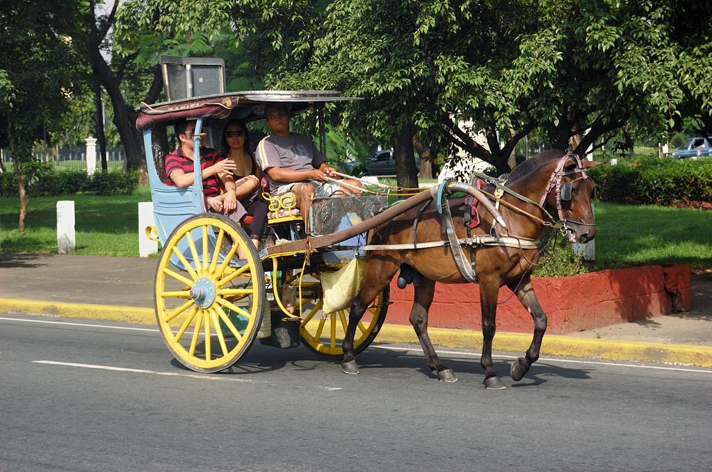 Повозка для туристов