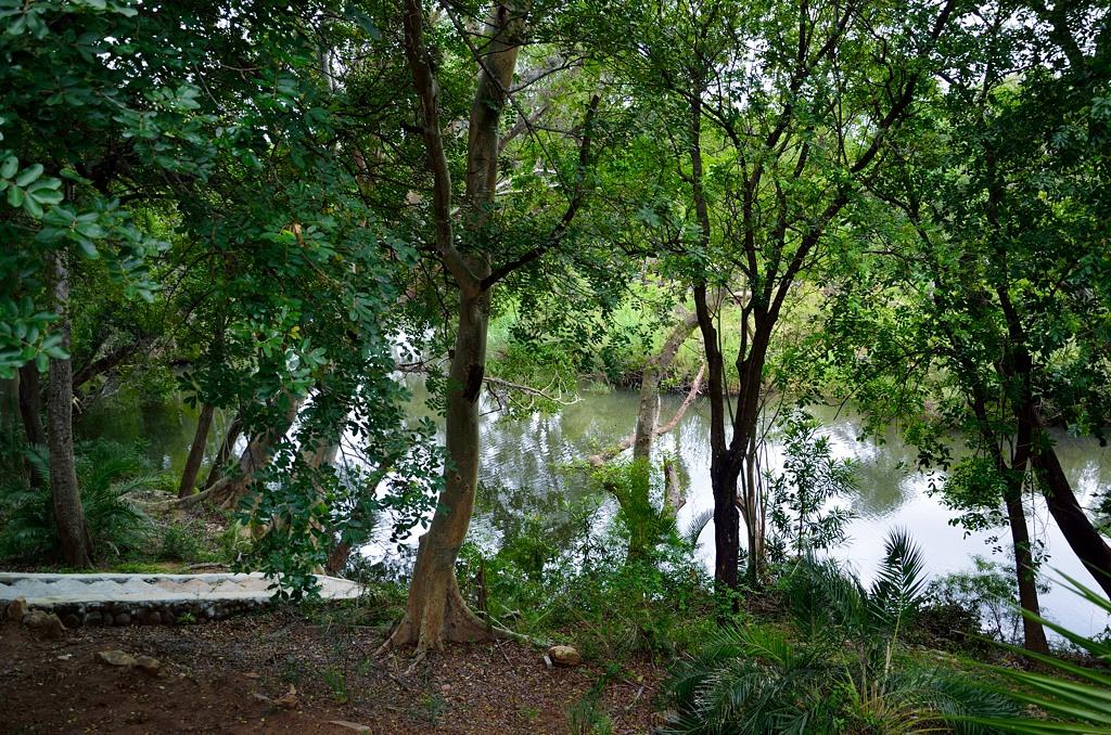 Река Блайд с плещущимися в ней крокодилами и бегемотами