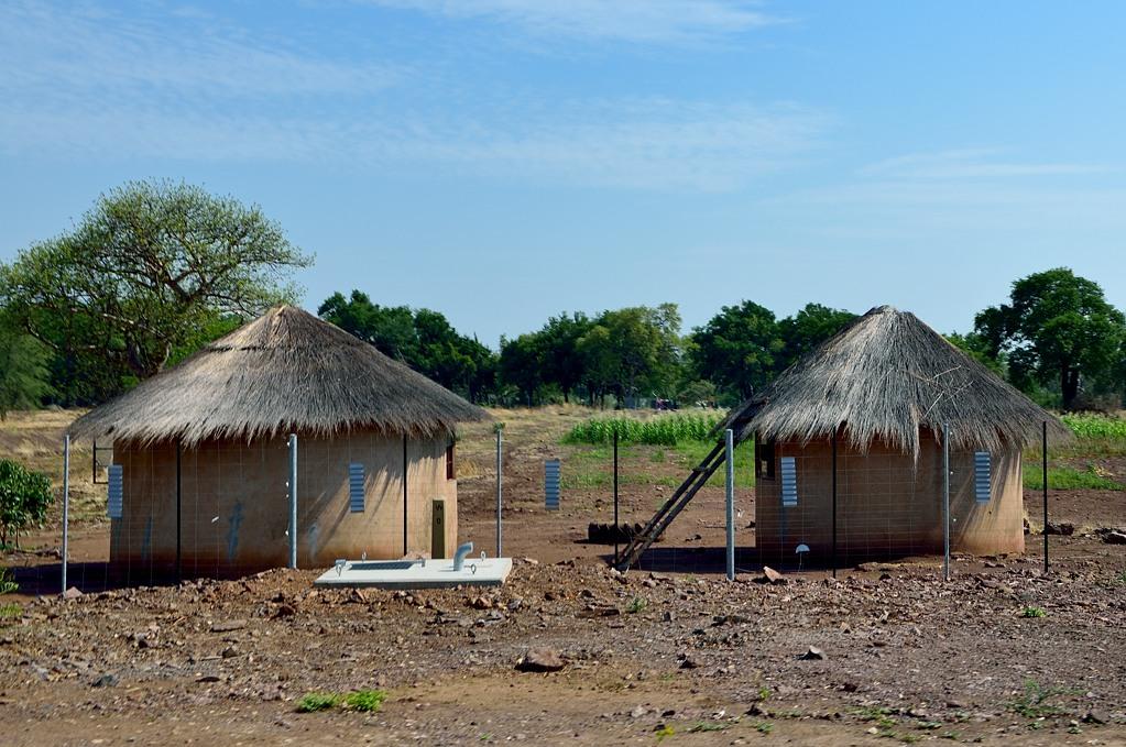 Местные домики