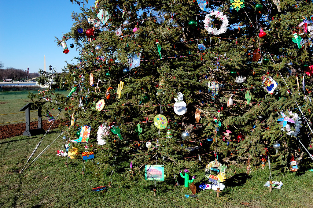 Елочные игрушки, сделанные школьниками Аризоны для елки у Капитолия