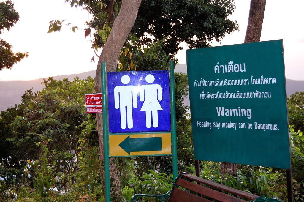 Сходите в туалет, но не вздумайте кормить обезьян