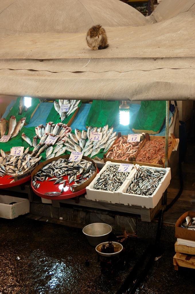 Рыбный рынок у Галатского моста