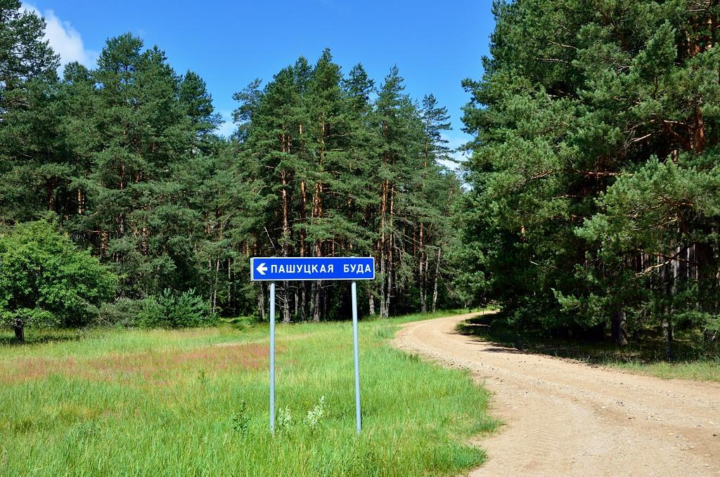 Внутри Беловежской пущи есть деревня - Пашуцкая Буда