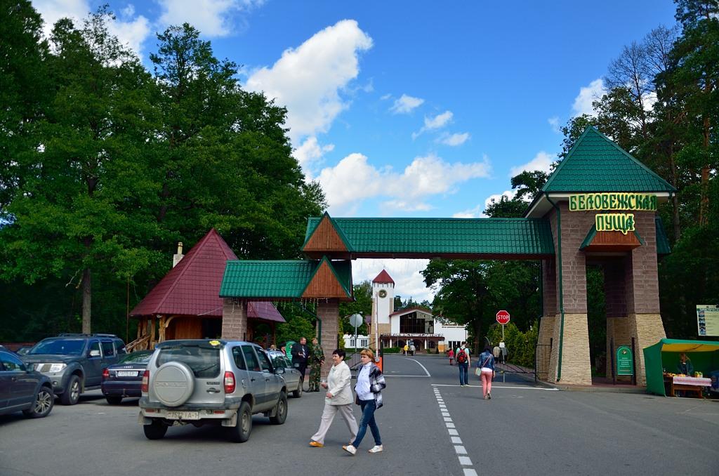 У главных ворот Беловежской пущи