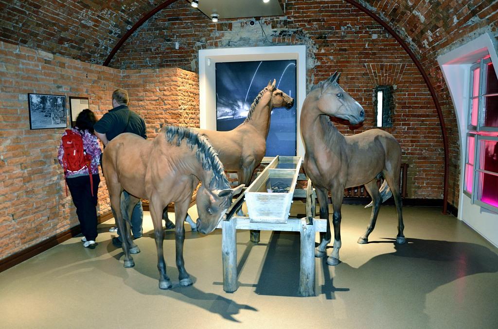 """Лошади. Видимо для модной ныне политкорректности - типа не только люди воевали. Как написано на памятнике животным на войне в Лондоне - """"у них не было выбора..."""""""