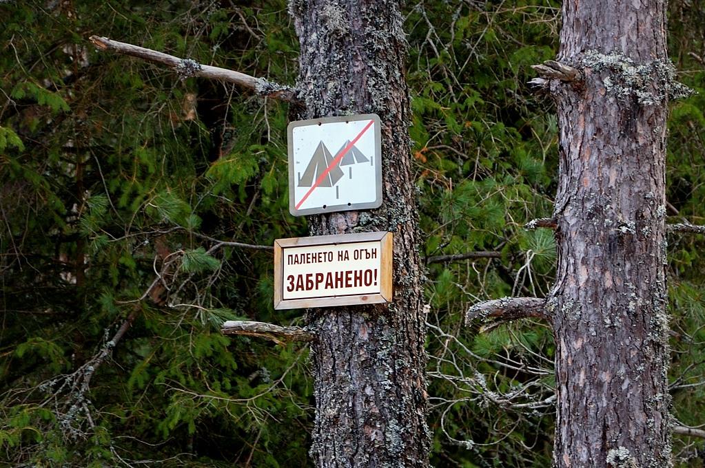 Палить огонь запрещено