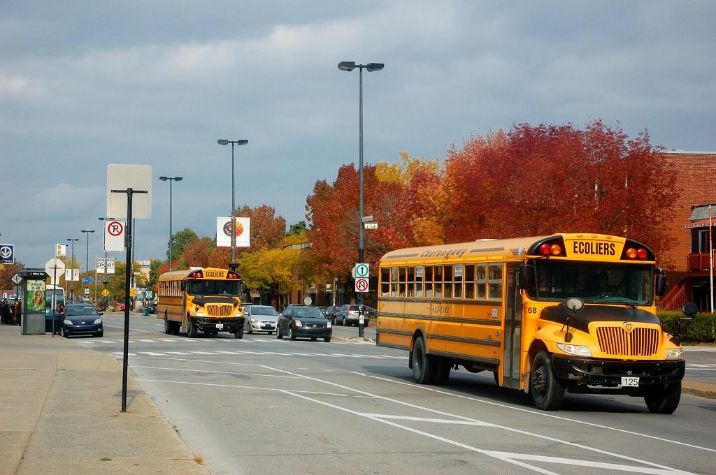 Монреальские школьные автобусы