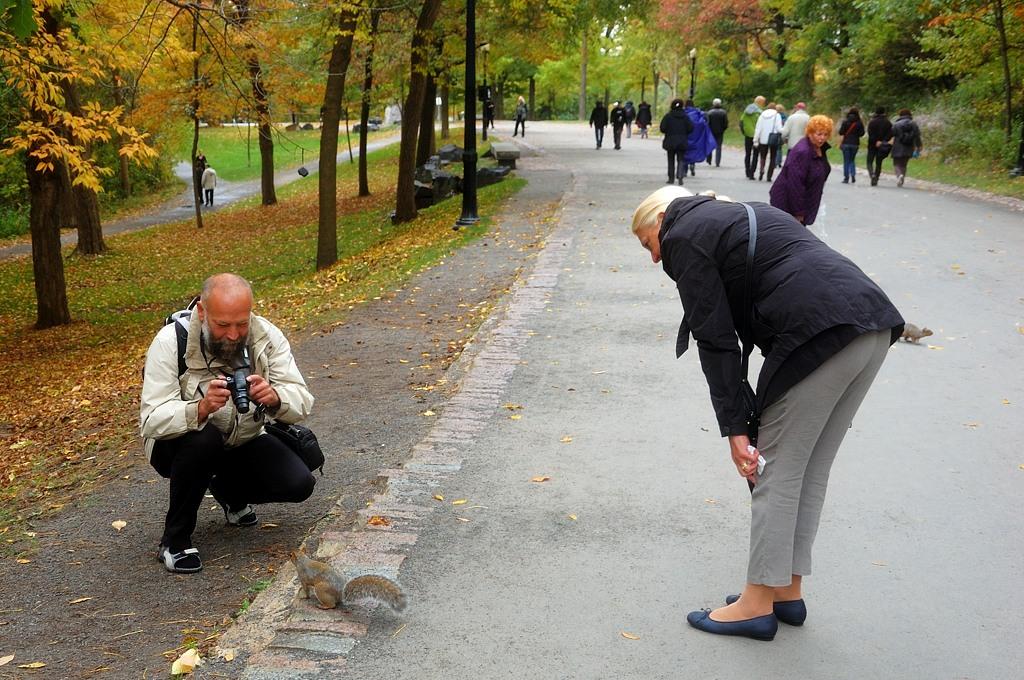 Туристы с белками