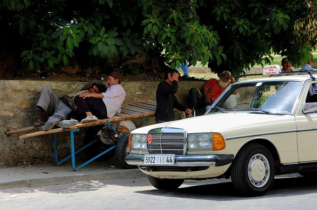 Арабские пролетарии отдыхают на телеге
