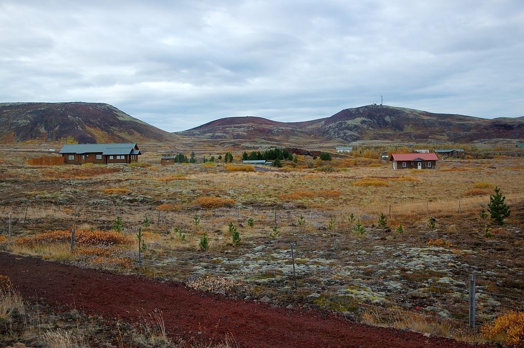 Дачный поселок среди мхов