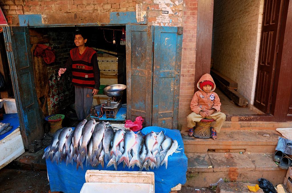 Торговля рыбой на улице