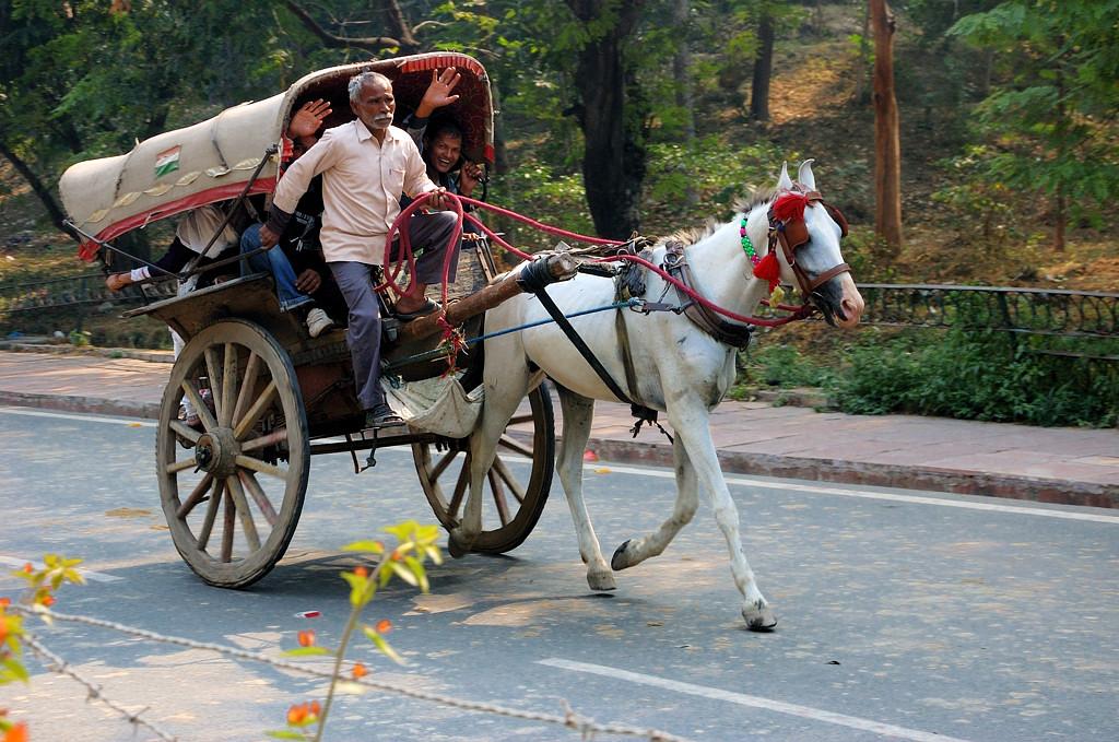 На дороге от Таджа в Агру