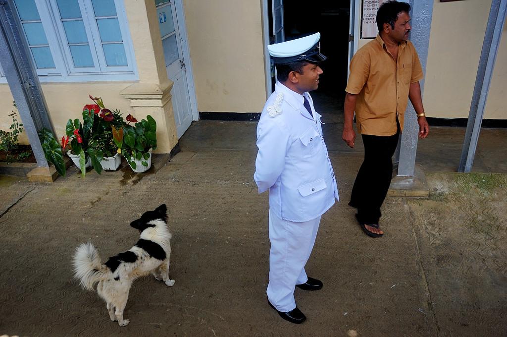 Железнодорожный генерал (с собакой)