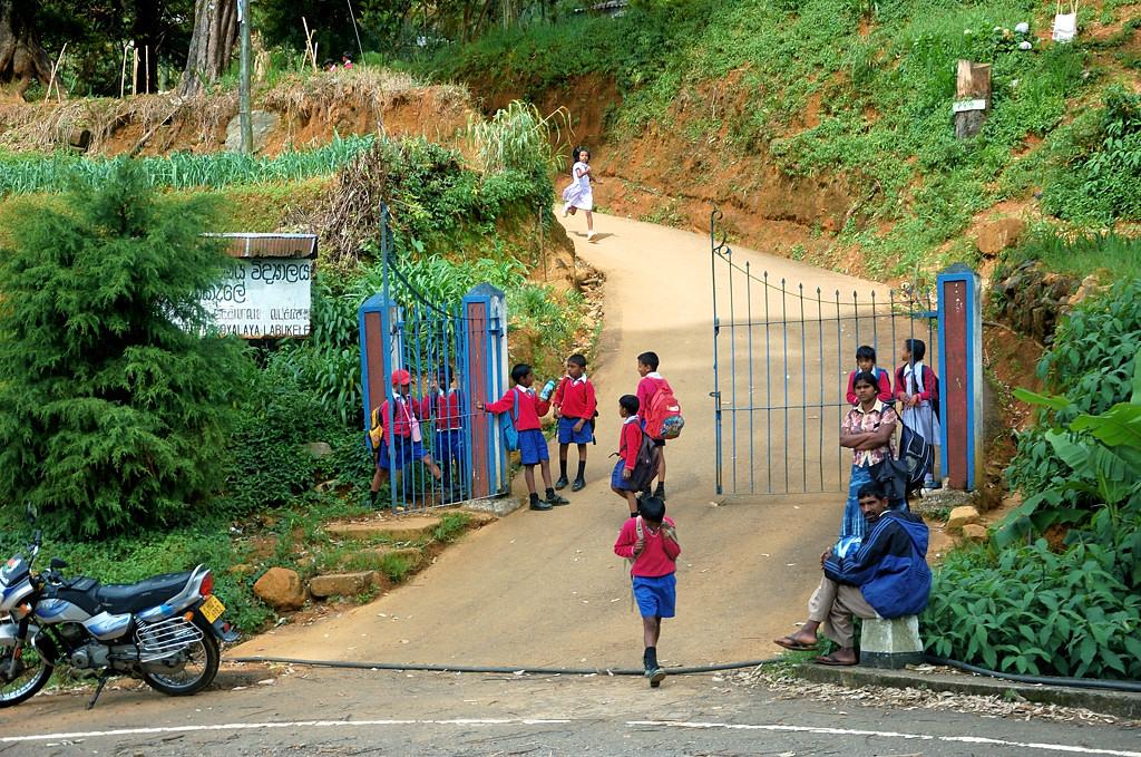 Местные школьники