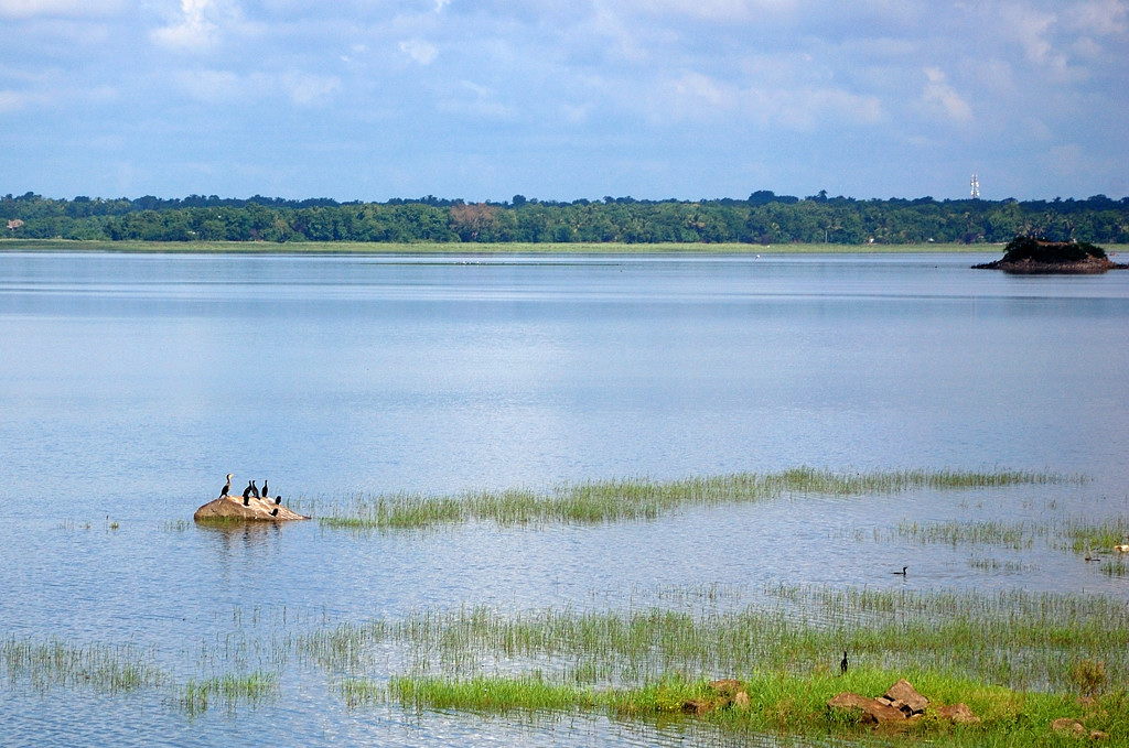 На берегу озера в Поллонаруве