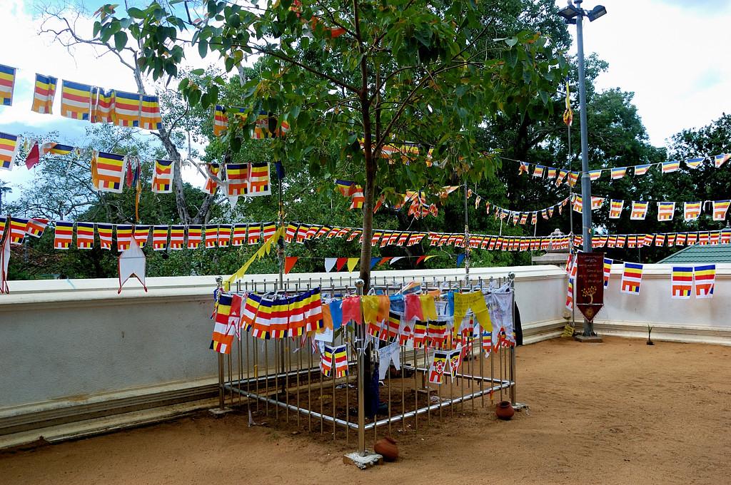 Бесплатно пошли в какой-то храм