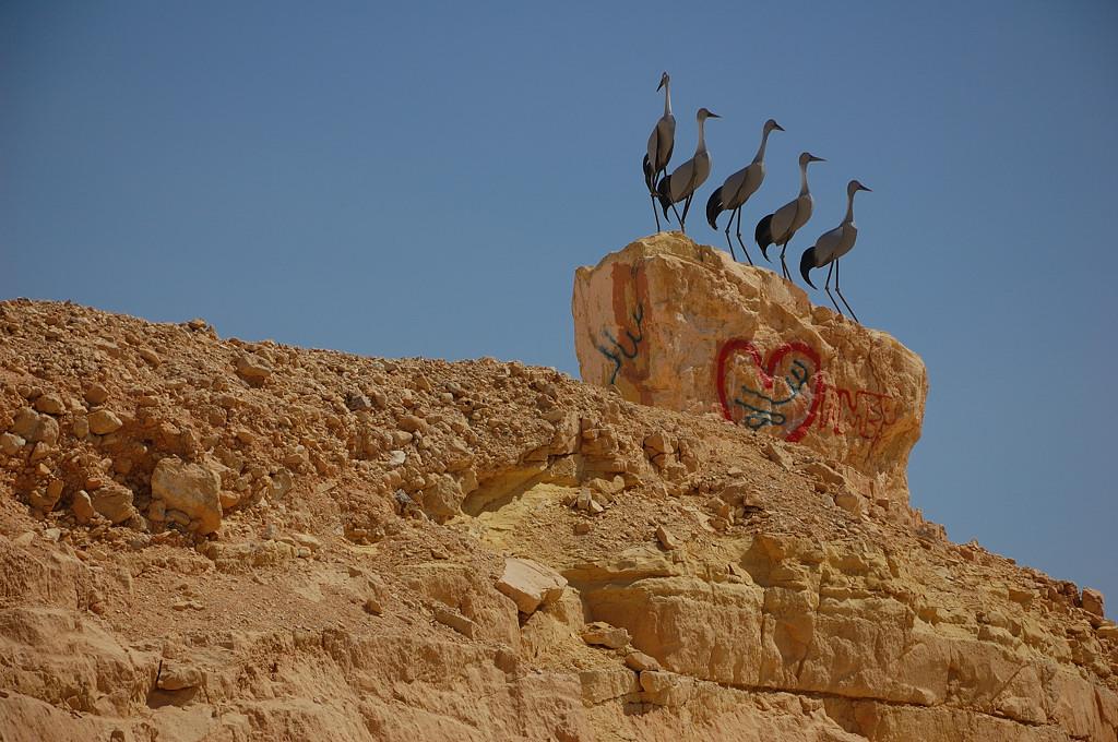 Инсталляция в пустыне