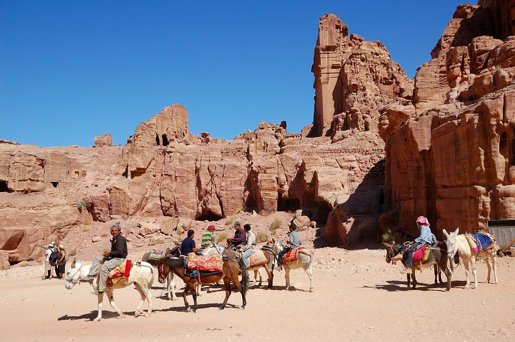 Повсюду предлагают верблюдов и осликов