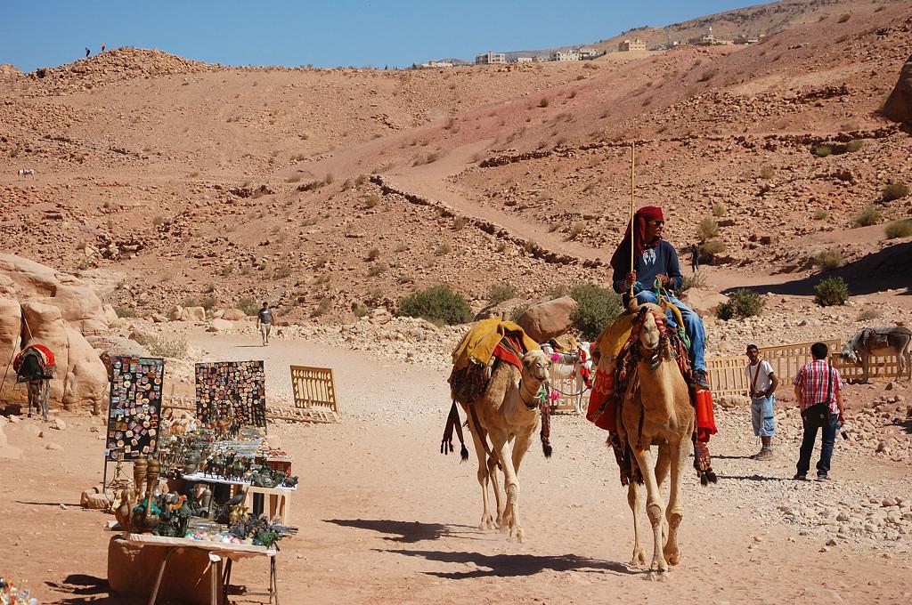 Хотите на верблюде?