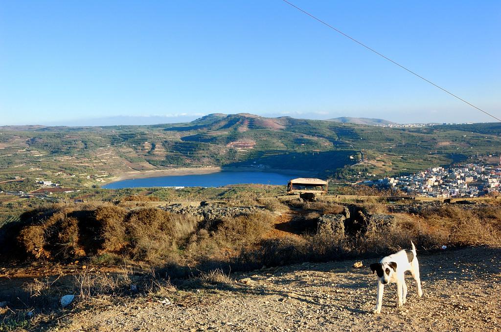 Вид с горы Нимруд