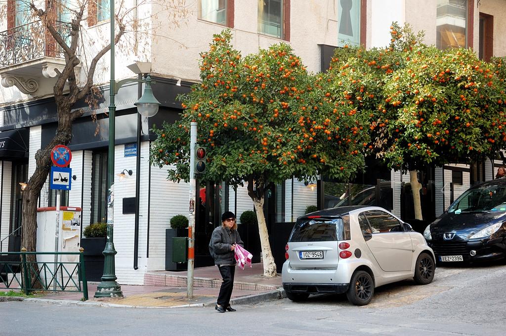 Тут в феврале на улицах растут апельсины. Кислятина правда жуткая
