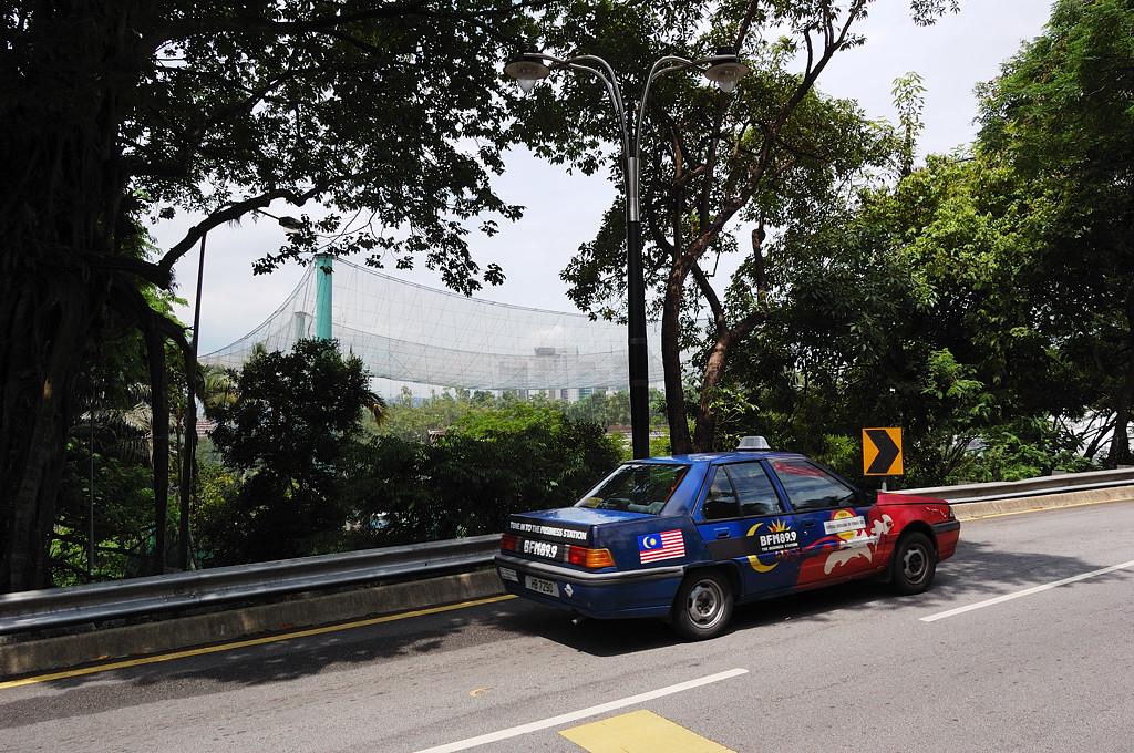 Местное такси. На заднем плане парк птиц - кусок тропического леса, накрытый сеткой