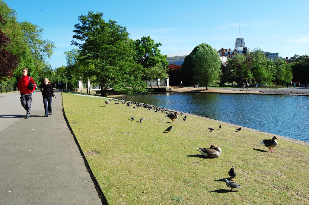 Лондон. В Риджентс-парке