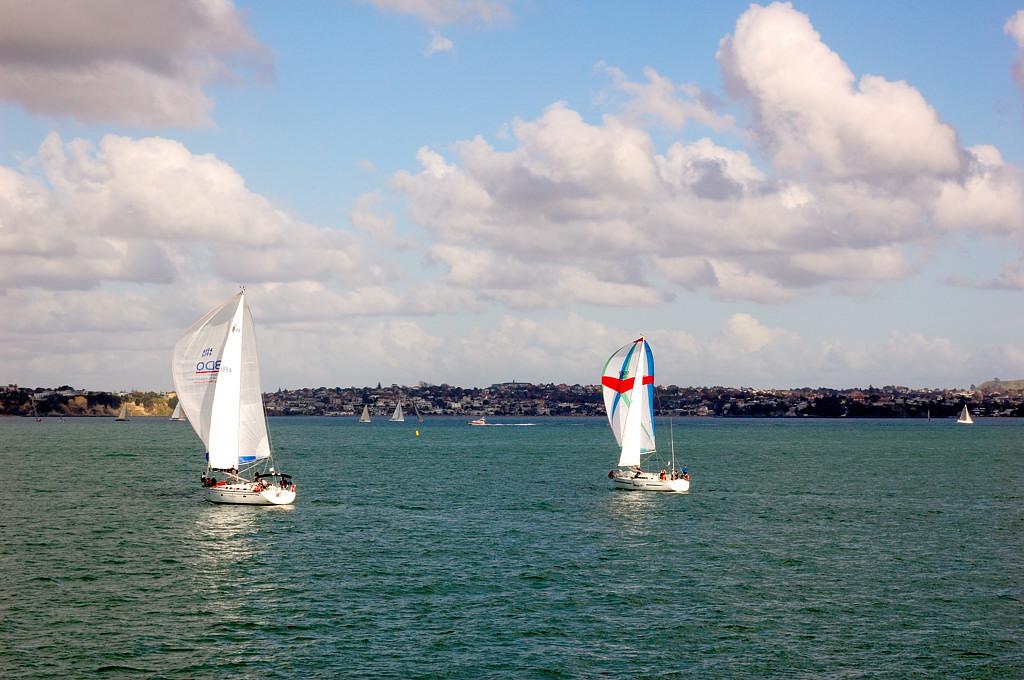 Яхты в окрестностях Окленда