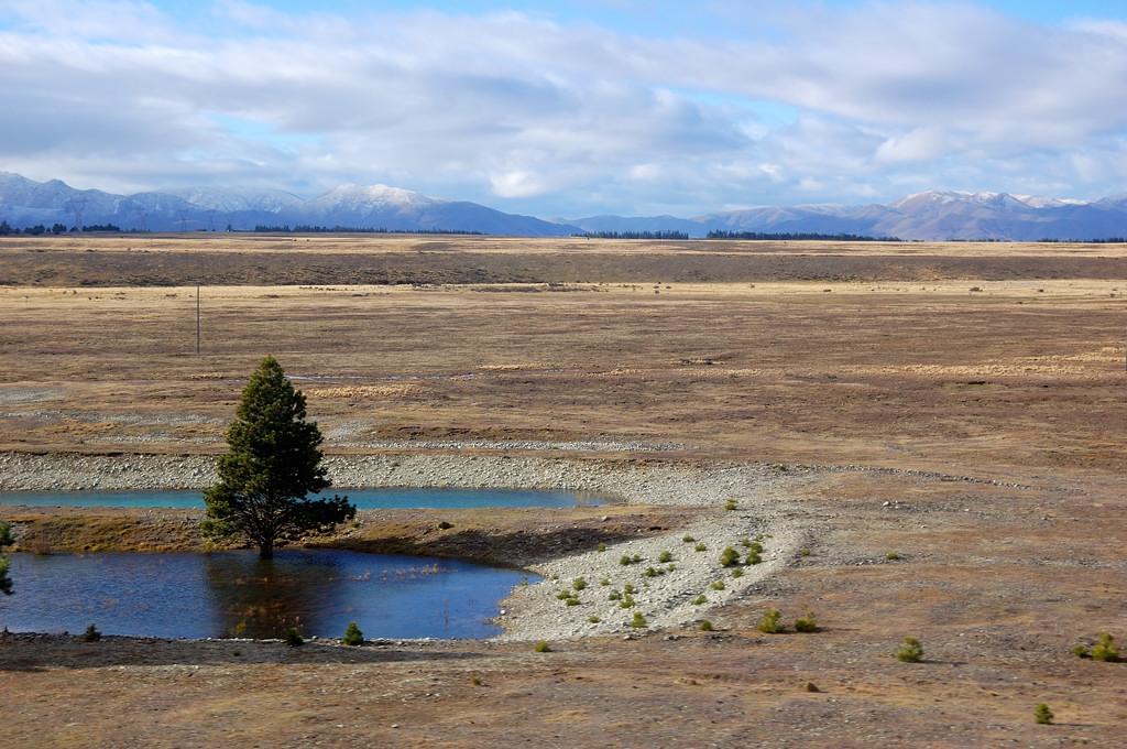 Пустынная местность между озерами Текапо и Пукаки