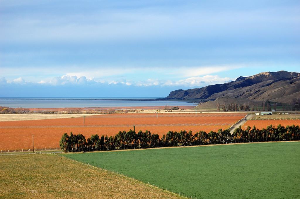 Пейзажи Южного острова из окна поезда Tranzcoastal