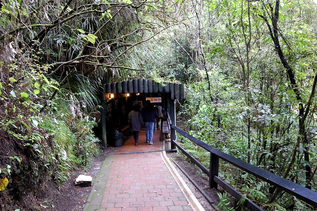 У входа в пещеру светлячков Ваитомо