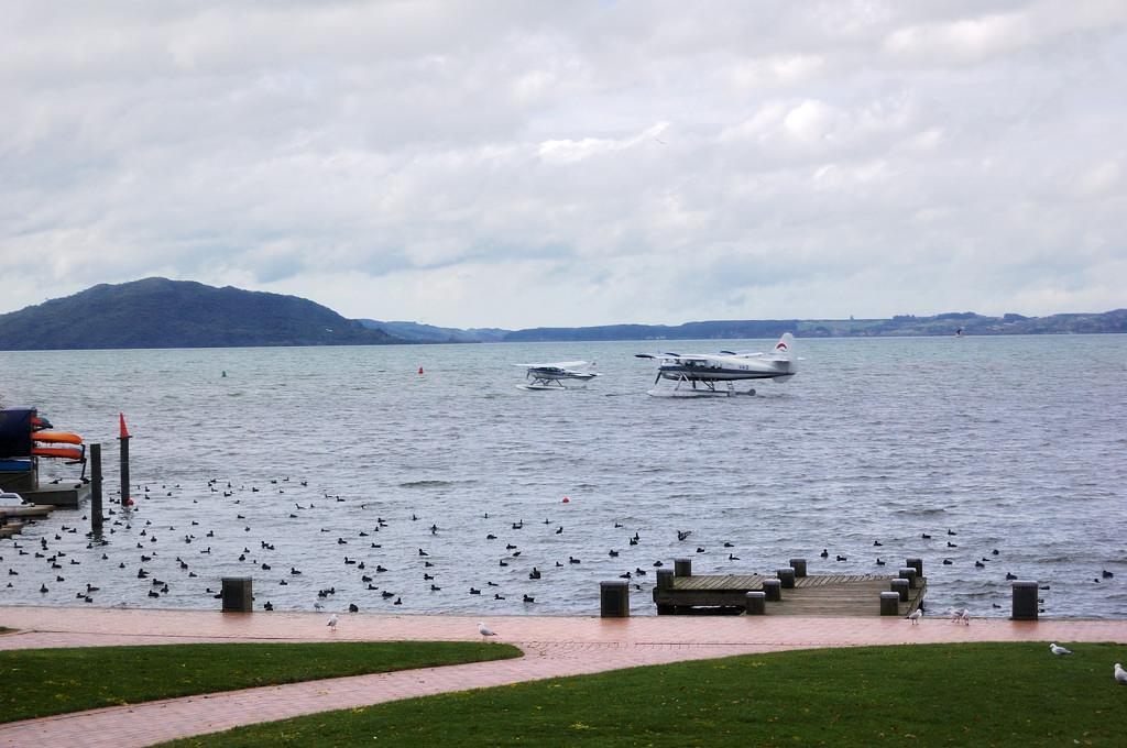На озере Роторуа
