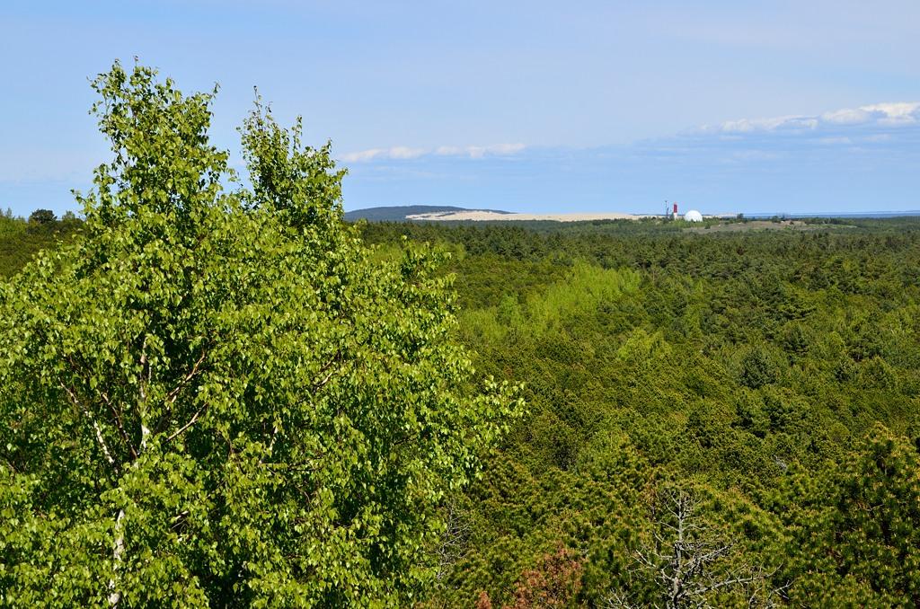 На Высоте Мюллера стоит невысокая деревянная вышка. С нее видна следующая дюна, маяк на ней и какой-то купол