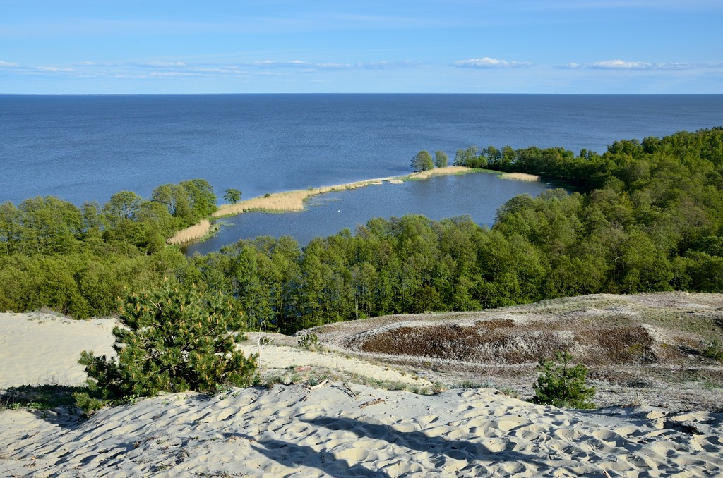 Вот и озеро Лебедь. Оно отделено от Куршского залива узкой перемычкой