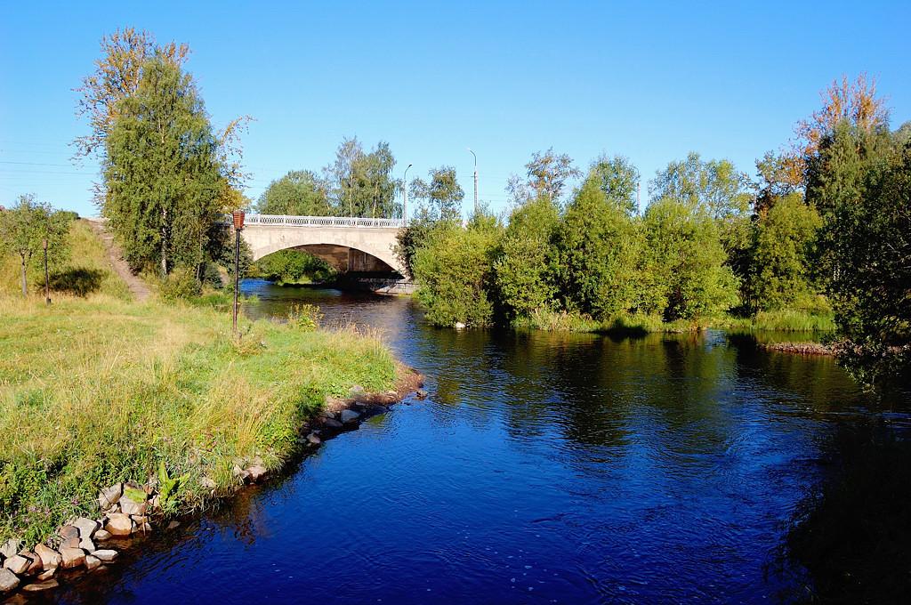 Речка Лососинка у моста на ул. Правды