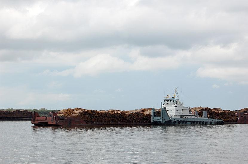 Перевозка леса по Амуру