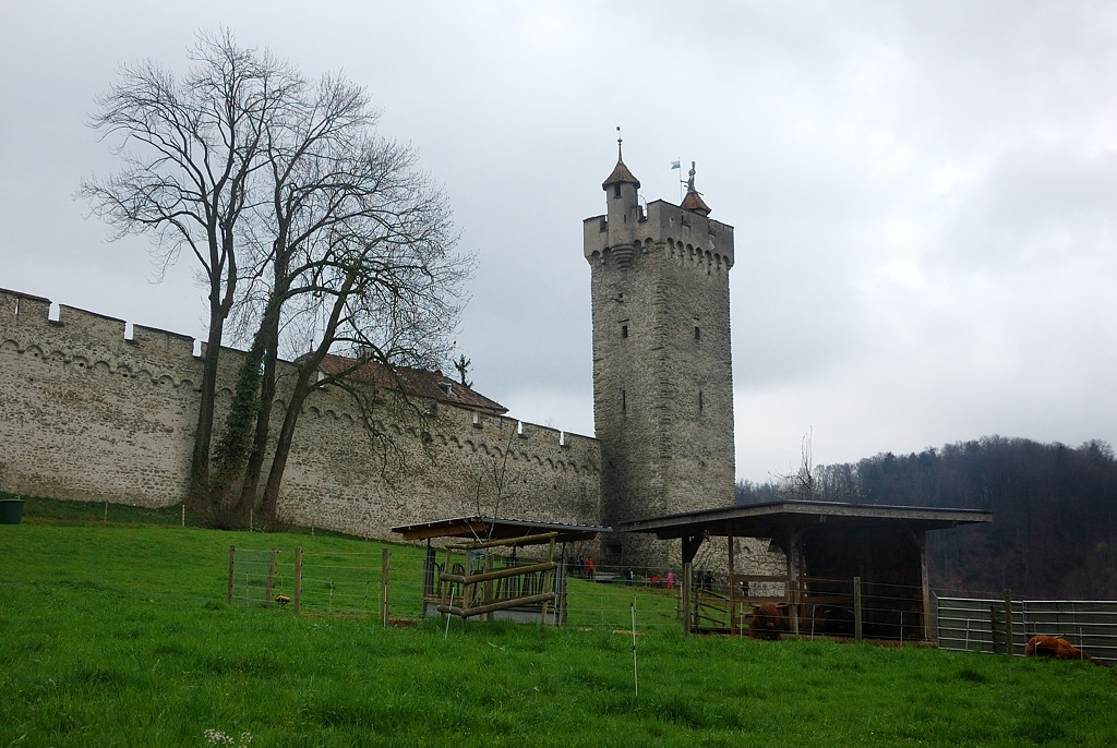 Башня Männli